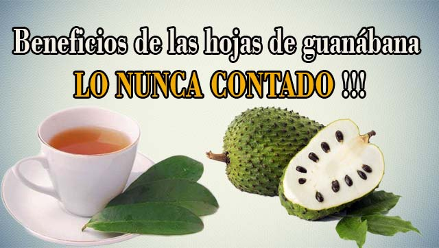 Guanabana para adelgazar articulo
